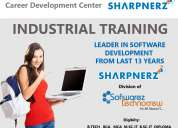 job oriented training cum job opportunity form best it company