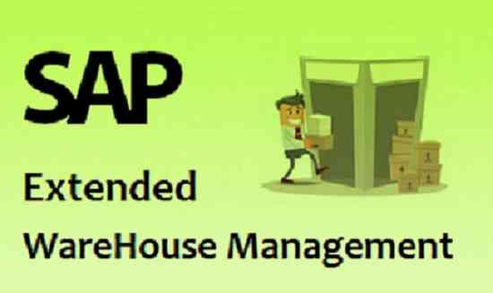SAP EWM Online Training and job support service, Hyderabad - Doplim