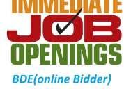 Urgent requirement bde(online bidder)