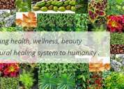 Ayurvedic & herbal indian products online worldwide with free shipping