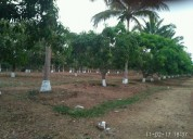 Farm land for sale near navodaya school dharwad