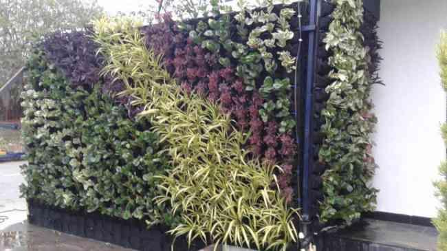 Vertical Garden Products in Delhi, India