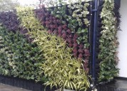 Vertical garden products in delhi, india