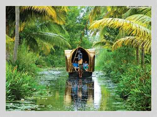 Cabs Booking In Mysore To Wayanadu 9632722100/8951915100