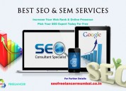 Best seo freelancer in mumbai - get your web site in google 1st page