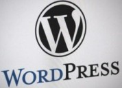 Lead businesses by crafting and building wordpress website