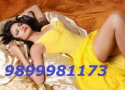 Vip hey guys come and gate escort service 9899981173 in delhi ncr