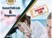 Kansal path labs | top best diagnostic center and pathology lab in yamuna vihar, delhi