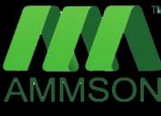 web designing and development company in kurnool