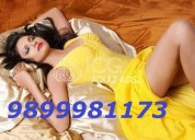 Hot and sexy call girls 9899981173 in delhi ncr