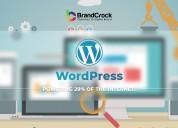 Wordpress  development - brandcrock gmbh