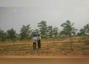 Greenacers urban farming community land