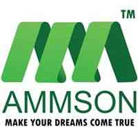 Pre-eminent Digital Marketing Agency / Company in India - Ammson International