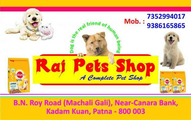 pet shop in patna at 7352994017
