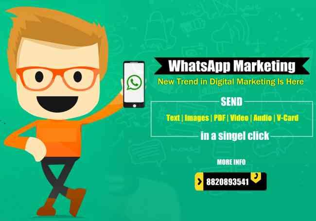SMS MARKETING,Social Media