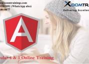 Angular 4 & 5 online training