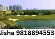 Nisha 98l8894553 dlf the crest prices gurgaon flat