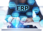 Erp software company in india