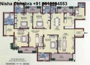 Nisha98l8894553 vipul belmonte resale 3100sqft