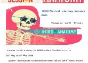 Mbbs medical   anatomy  summer  class