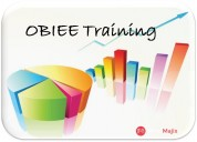 Get started your career with obiee training