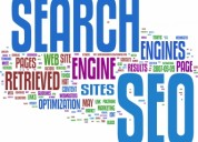 Digi cops provides seo services