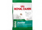 Buy royal canin mini junior 4kg online- 4petneeds