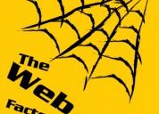 Web design | web development | seo | smm | digital