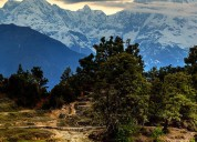 Contact for tour and travel packages in chopta