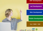 Affordable .net website development company in ahm