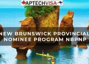 How to apply new brunswick pnp