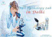 Pathology labs in delhi | pathology lab delhi | pa