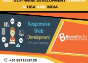 Software development company india  and usa