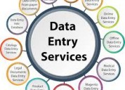 Franchise for data entry project