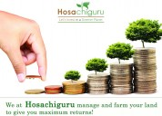 Farm business in bangalore