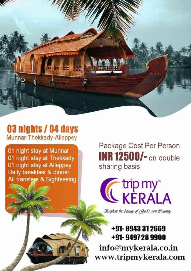Best Kerala Honeymoon Packages
