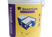 V S Enterprises - Asian Paints Smartcare Textured