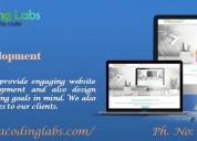 Web Development in Chandigrah