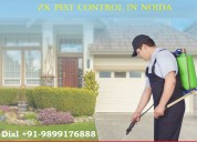 Best zx pest control in noida
