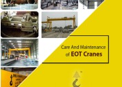 Eot cranes manufactures and supplier's in india