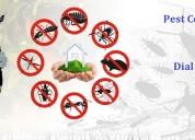Best pest control dwarka and godrej pest control