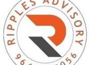Ripples advisory pvt ltd, indore   company & conta