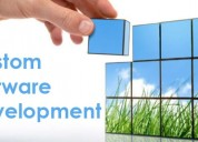Custom software development company india |