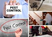 Best 20% discount pest control dwarka and termite