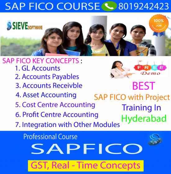 Sap fico Training in Hyderabad-Sieve Software, Hyderabad - Doplim