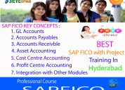 sap fico training in hyderabad-sieve software