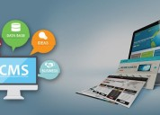 Website development company in mumbai | web portal