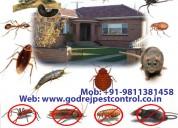 Get helpful godrej pest control faridabad and term