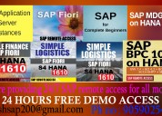SAP SERVER ONLINE ACCESS