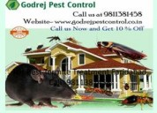 Termite treatment and pest control faridabad
